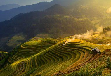 Longji Rice Terraces In China Image