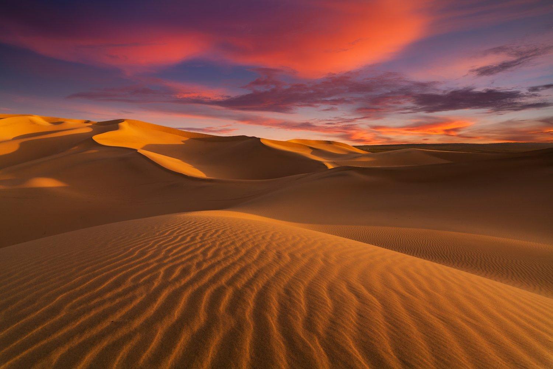 sahara-desert.jpg