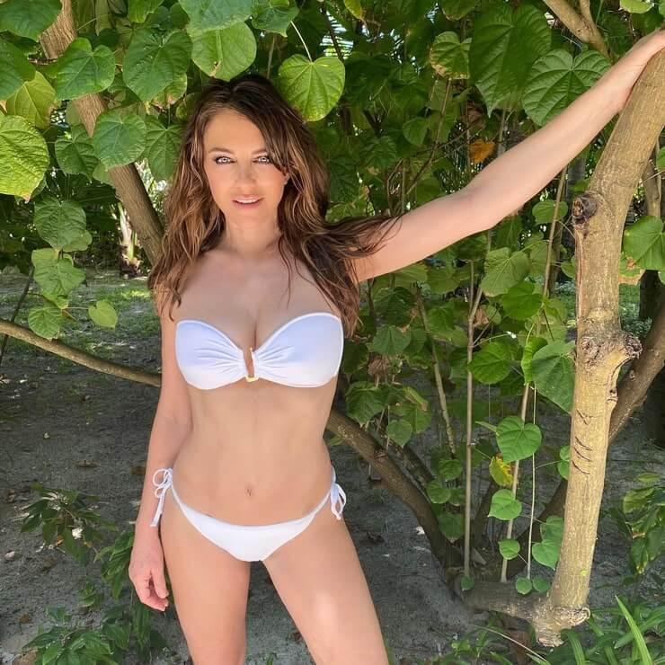 Elizabeth Hurley Hot Bikini